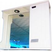 Bathroom Cabinet (Wall Hung)